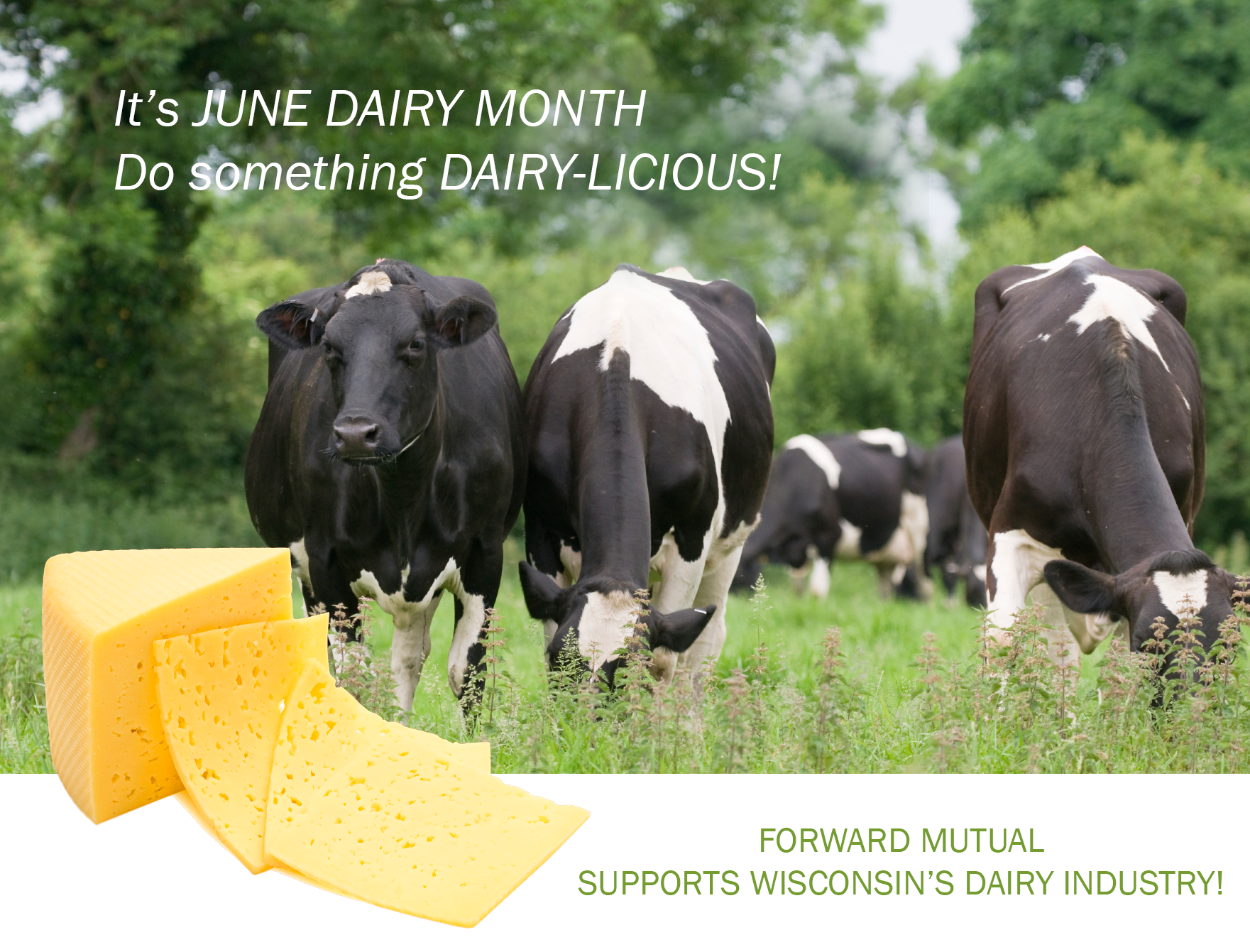Forward Mutual supports June Dairy Month